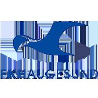 FK Haugesund