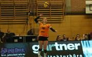Volleyball / Bundesliga Damen