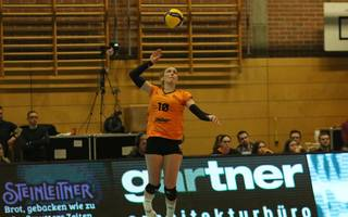Volleyball / Bundesliga Damen