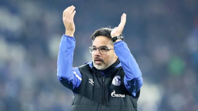 David Wagner ist seit Sommer Trainer von Schalke 04