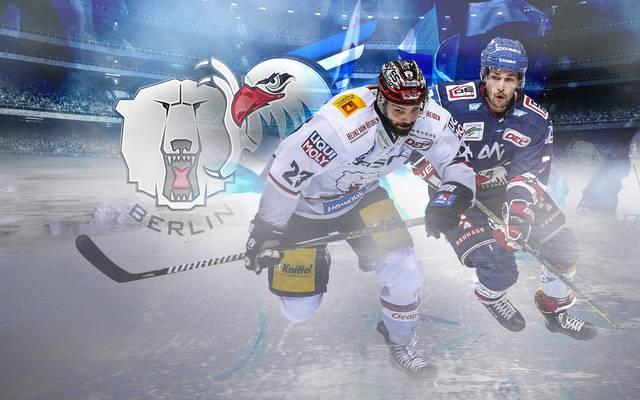 Die Eisbären Berlin empfangen die Adler Mannheim