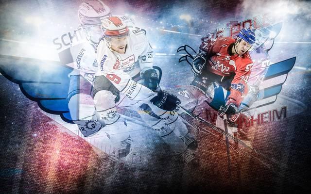 Eishockey, DEL: Schwenningen - Adler Mannheim LIVE im TV, Stream & Ticker