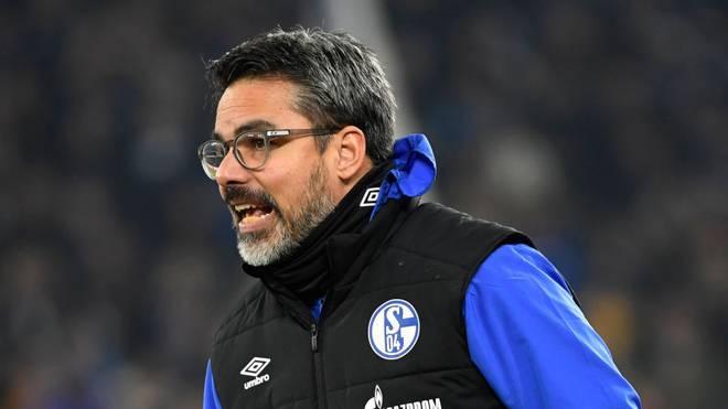 Seit dieser Saison ist David Wagner Trainer bei Schalke 04