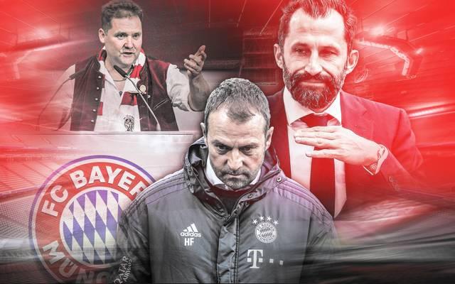 Hans Gehrlein (l.) ist ein wichtiger Vertreter der Bayern-Fans