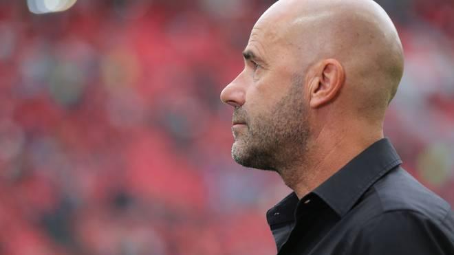 Peter Bosz übernahm Bayer Leverkusen in der vergangenen Winterpause
