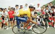 Radsport / Tour de France