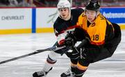 Eishockey / PENNY DEL
