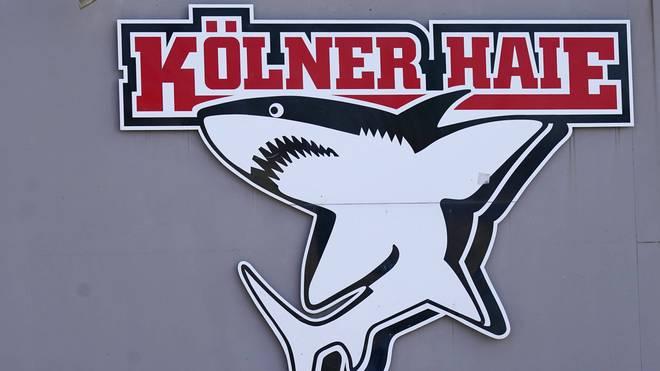 Bei den Kölner Haien wurde ein Spieler positiv auf das Coronavirus getestet
