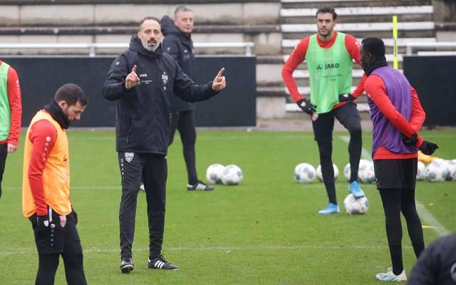Pellegrino Matarazzo bei seiner ersten Trainingseinheit als Coach des VfB Stuttgart