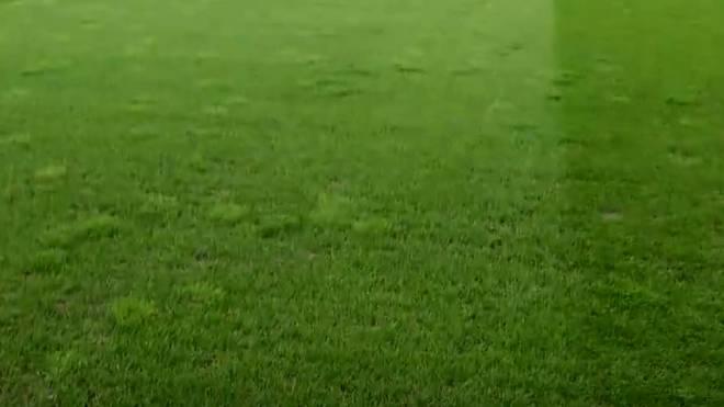 Der Rasen im Red-Bull-Arena in Salzburg sorgt für Ärger