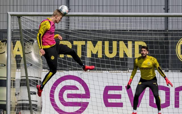 Die Dortmunder testen in der Sommervorbereitung gegen fünf verschiedene Gegner