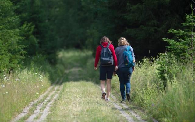 Wandern hält fit