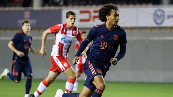 Joshua Zirkzee und der FC Bayern wollen die Jugend Tottenhams besiegen