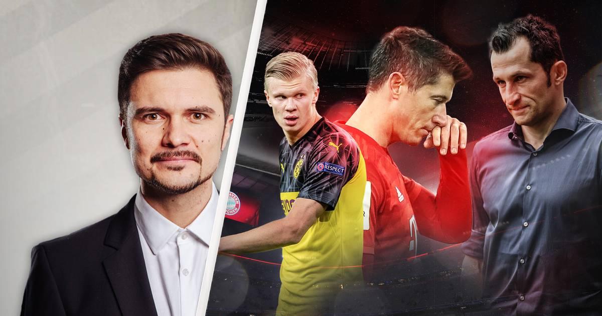 Robert Lewandowski: FC Bayern darf sich nicht 2. Fall Haaland leisten - Kommentar