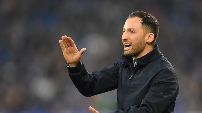 Schalke 04: Ex.Trainer Domenico Tedesco spricht über seine Entlassung , Trainer Domenico Tedesco musste bei Schalke 04 gehen