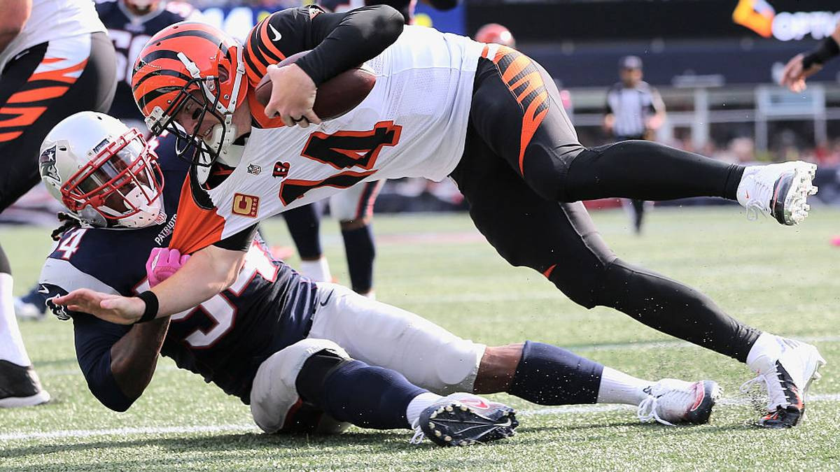 FOXBORO, MA - OCTOBER 16:  Dont'a Hightower #54 of the New England Patriots sacks Andy Dalton #14 of the Cincinnati Bengals during the third quater of the game at Gillette Stadium on October 16, 2016 in Foxboro, Massachusetts.  (Photo by Jim Rogash/Getty Images)