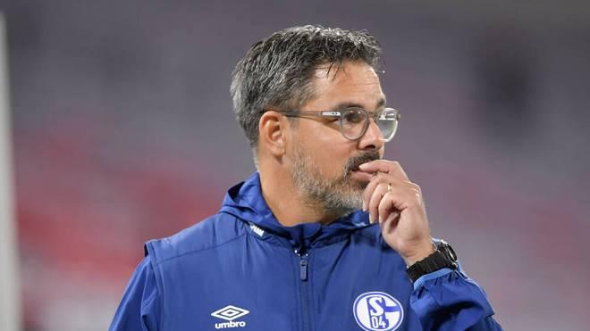"""David Wagner übernimmt nach Schalke-Aus """"die volle Verantwortung"""""""