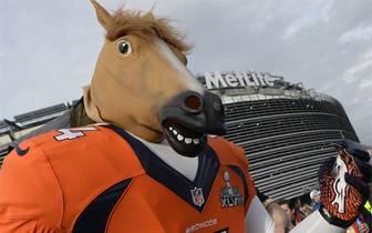 Der Super Bowl ist das Mega-Event schlechthin, ganz Amerika steht Kopf. Wenige Stunden vor dem Kick-Off ist die Vorfreude bei den Fans deutlich zu spüren. Einige Anhänger werfen sich sogar extra in Schale