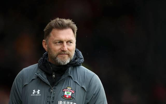 Ralph Hasenhüttl hat kürzlich seinen Vertrag beim FC Southampton verlängert