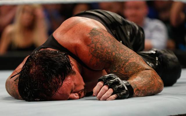 Undertaker WWE Hell in A Cell