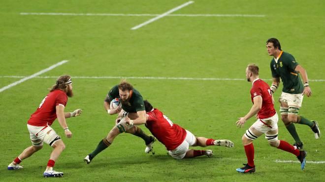 Die Rugby-Nationalmannschaft von Südafrika (in grün) steht bei der WM im Viertelfinale