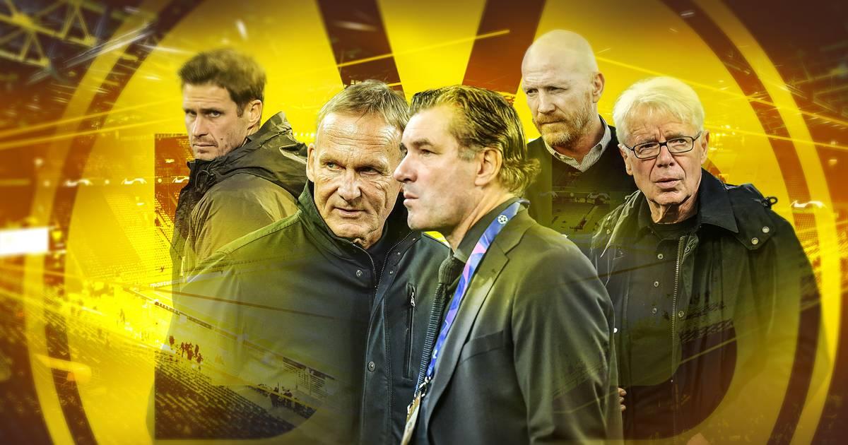 Borussia Dortmund: 5-Punkte-Plan der Bosse um Watzke, Rauball, Sammer und Zorc - SPORT1