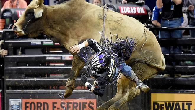 Bullriding ist in den USA eine sehr populäre Sportart