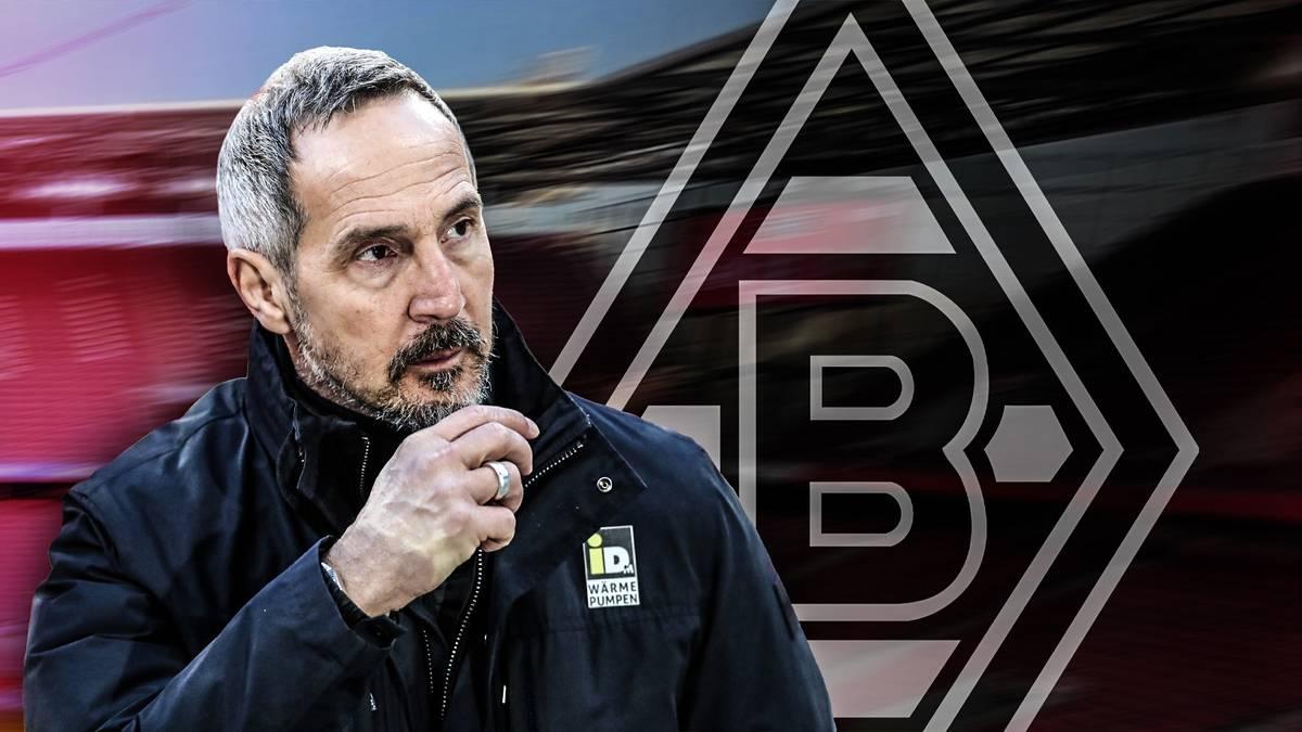 Adi Hütter soll angeblich ab Sommer Borussia Mönchengladbach übernehmen. Doch würde dieser Schritt für den Erfolgstrainer von Eintracht Frankfurt überhaupt Sinn ergeben?
