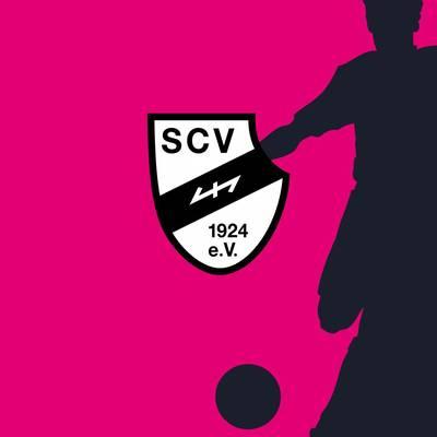 SC Verl - FC Viktoria 1889 Berlin (Highlights)