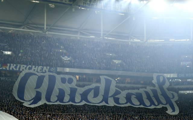 Fans des FC Schalke 04