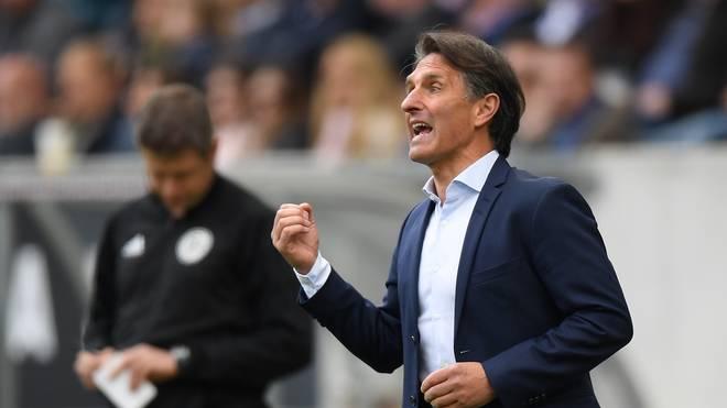 Hertha BSC: Trainer Bruno Labbadia neben David Wagner gehandelt, Bruno Labbadia verlässt den VfL Wolfsburg zum Saisonende