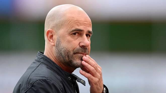 Peter Bosz steht mit Leverkusen im Pokalfinale