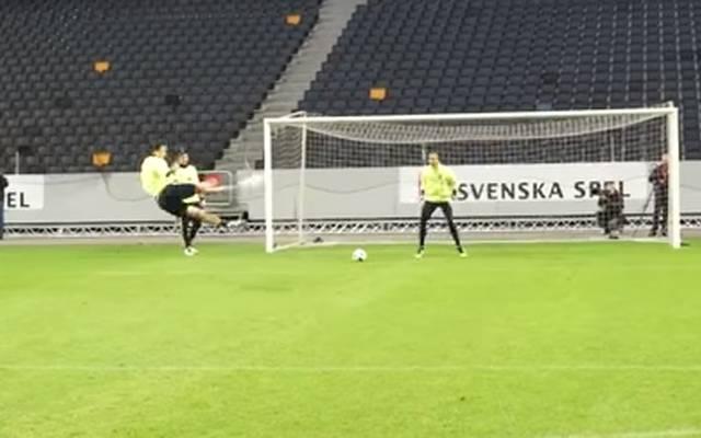 Zlatan Ibrahimovic schloss seine Aktion mit einem feinen Seitfallzieher ab