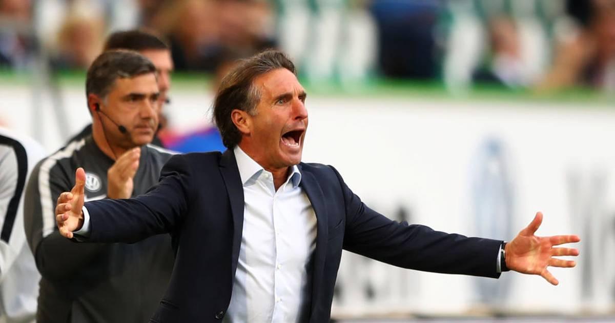 Hertha BSC: Bruno Labbadia wird neuer Cheftrainer