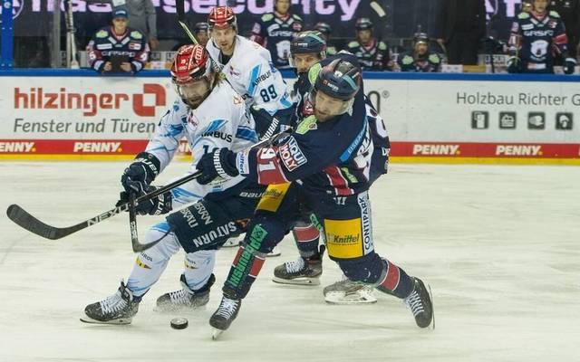 Der ERC Ingolstadt und die Eisbären Berlin müssen in Spiel 3 den Finalteilnehmer ermitteln