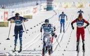 Wintersport / Skilanglauf