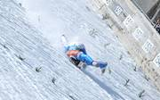 Wintersport / Skifliegen
