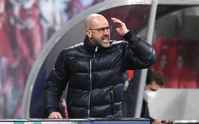 Peter Bosz und Bayer Leverkusen mussten zuletzt mehrere Rückschläge hinnehmen