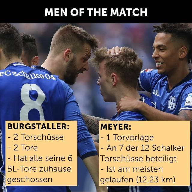 Daten zu Schalke 04