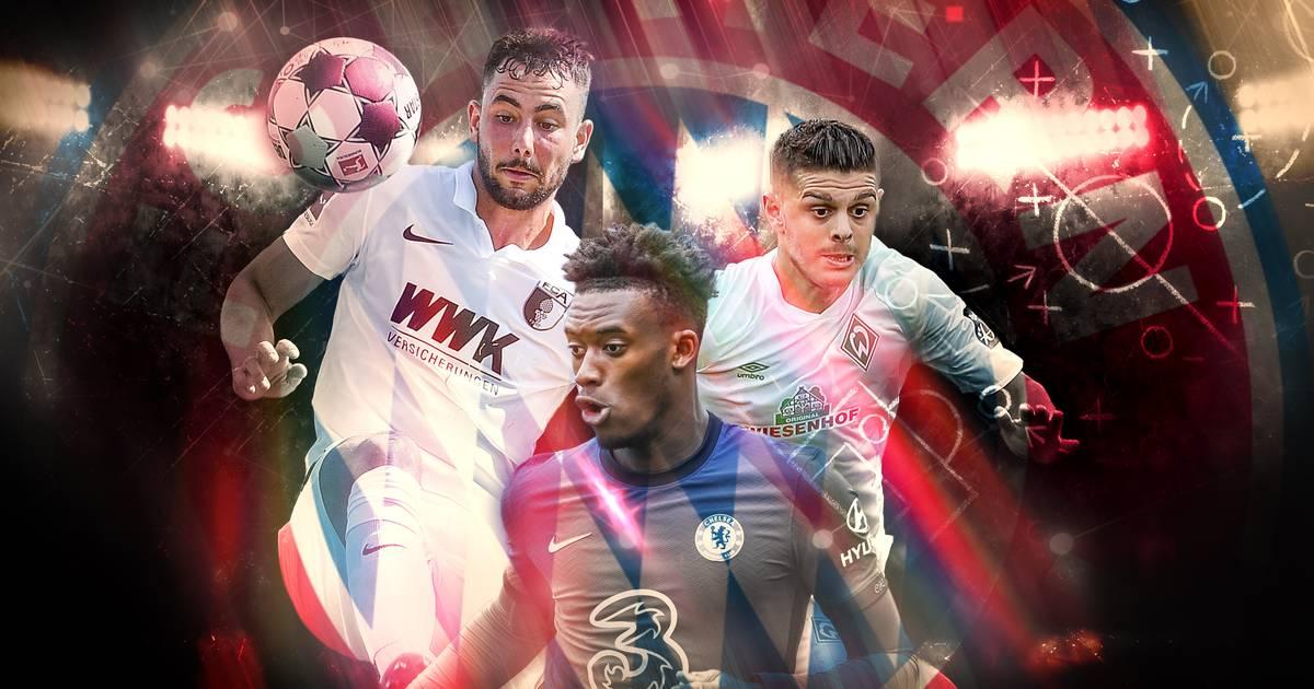 FC Bayern: Hudson-Odoy, Bailey und Co. als Kandidaten auf dem Flügel