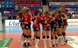 Volleyball / Bundesliga Frauen