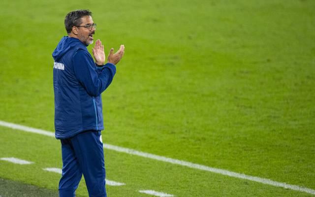 David Wagner scheiterte bei Schalke 04