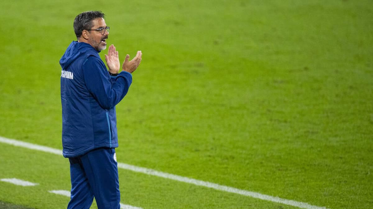 Ex-Schalker Wagner hat neuen Trainer-Job