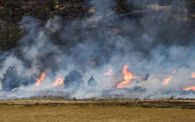 Die Rauchentwicklung der Waldbrände in den USA ist enorm