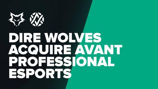 Dire Wolves übernehmen AVANT Gaming - Einstieg in CS:GO