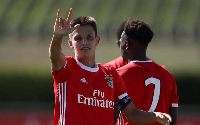 Tiago Dantas glänzte für Benfica in der Youth League