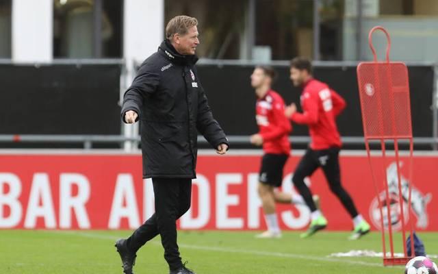 Markus Gisdol ist bei Köln seit einem Jahr im Amt