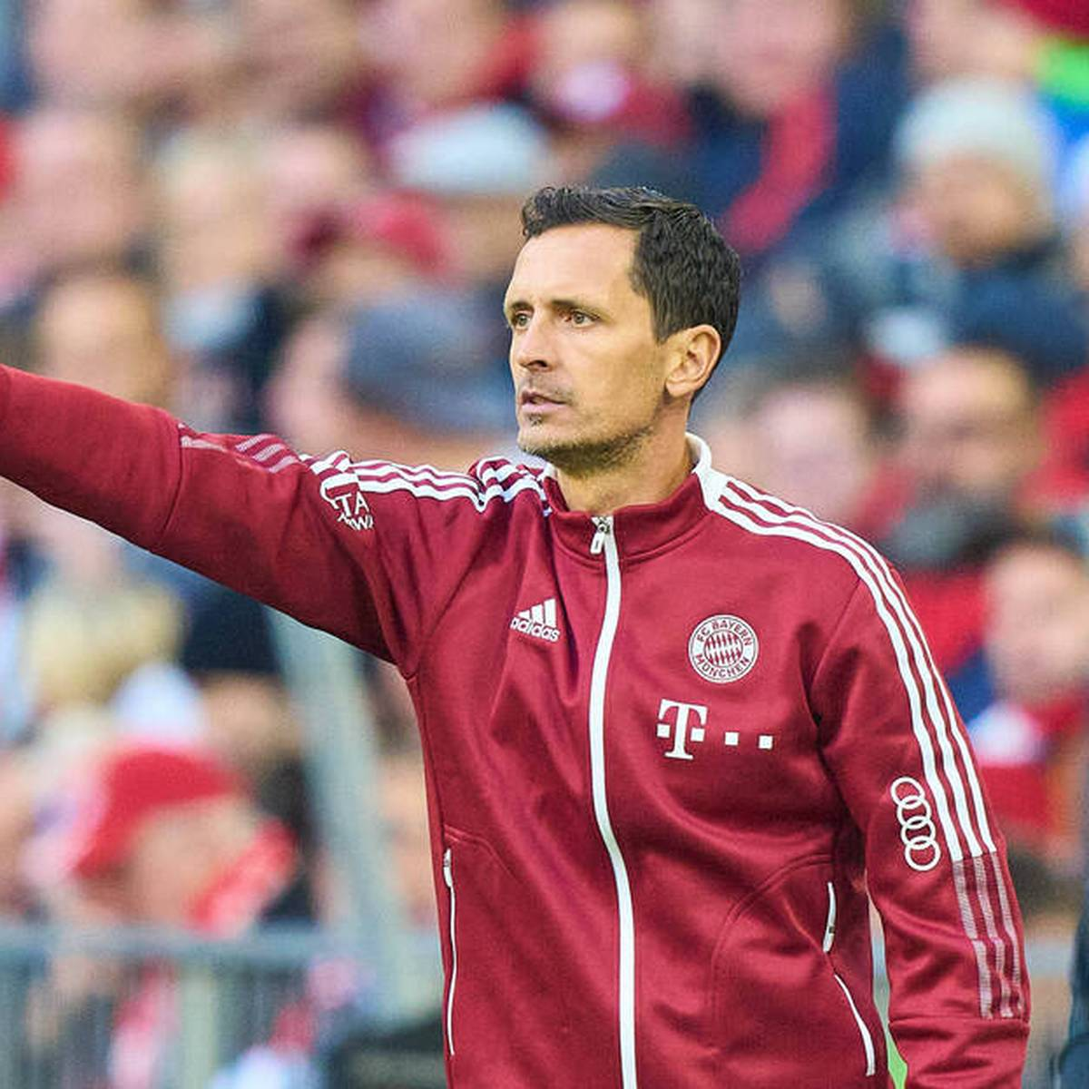 Bald Chefcoach? Das zeichnet Bayerns Toppmöller aus