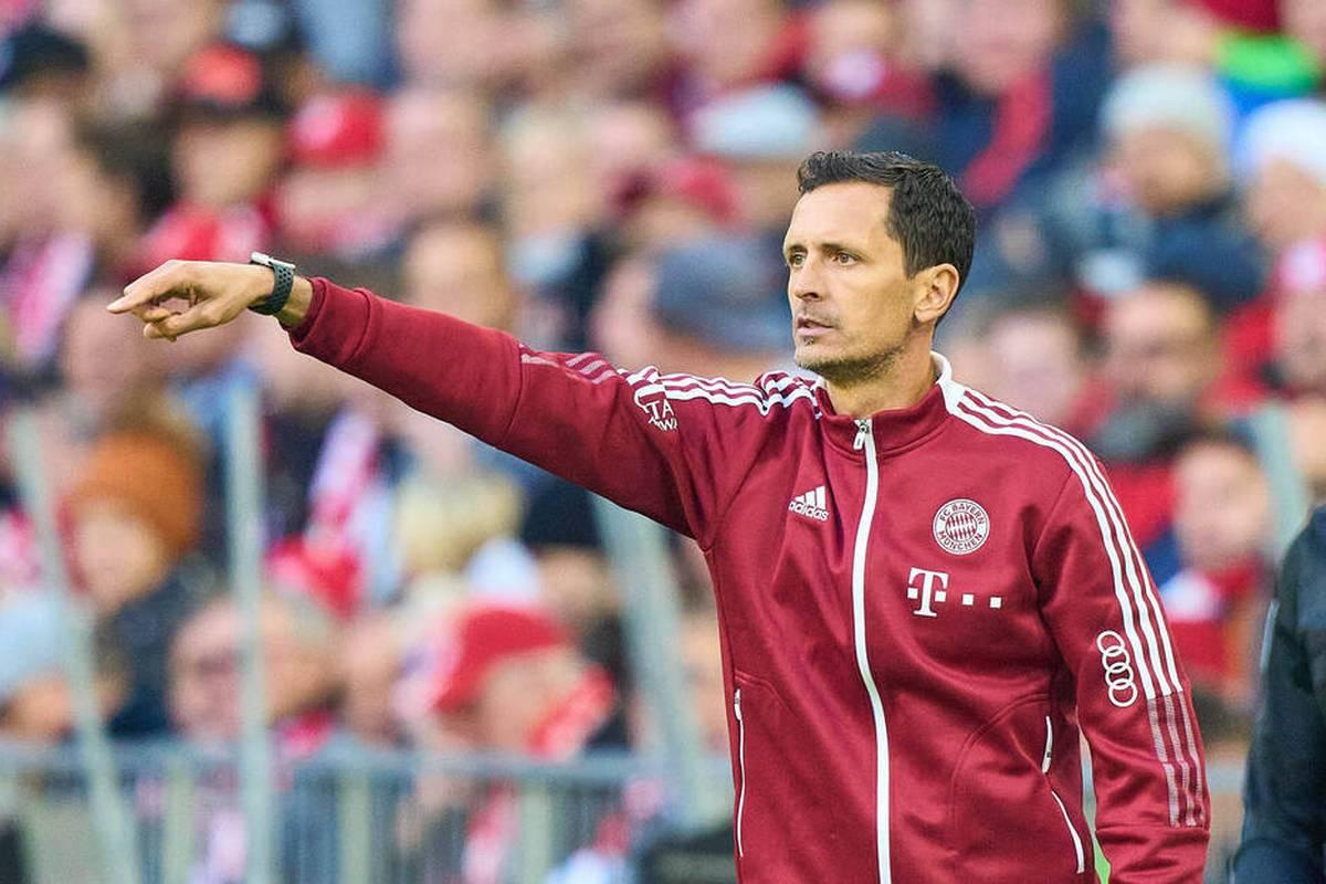 Dino Toppmöller vertritt im Pokal-Kracher bei den Bayern erneut Julian Nagelsmann. Vater Klaus Toppmöller spricht bei SPORT1 über die Aufgabe und den Namen seines Juniors.