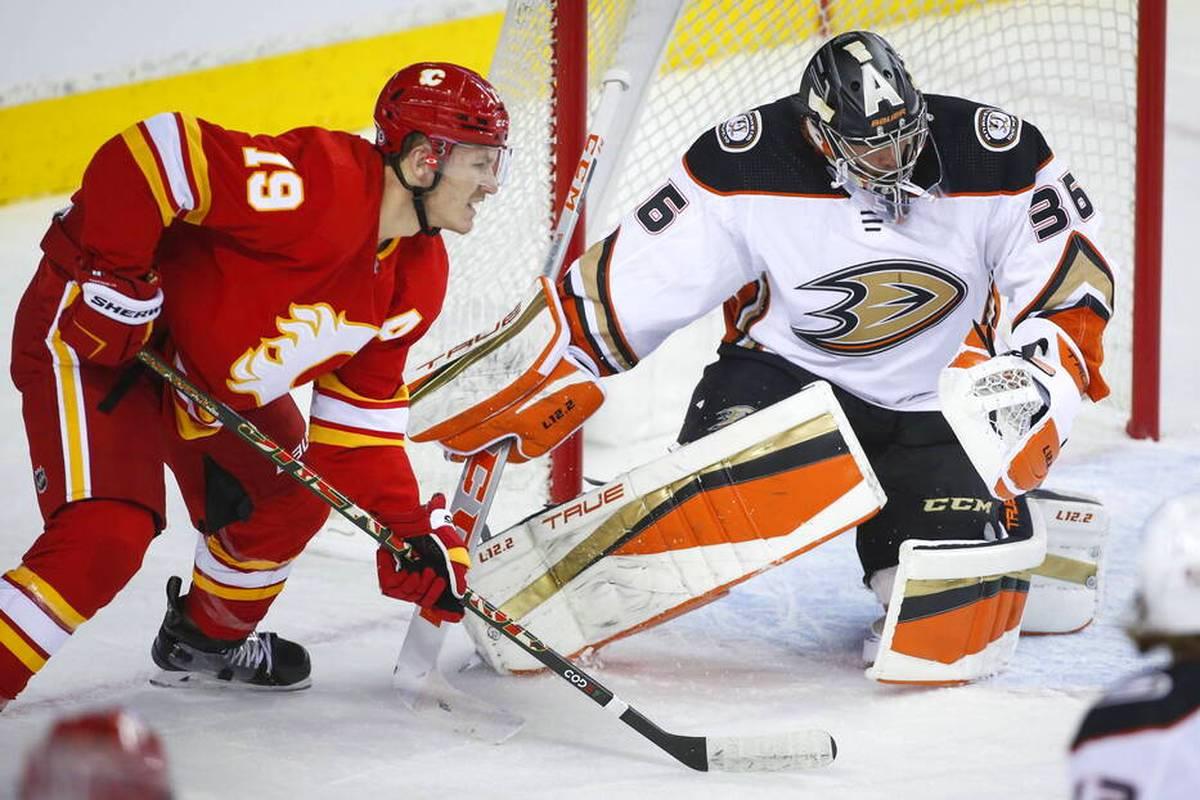 Verrückte Szenen in der NHL: Ein Calgary-Spieler verhindert durch eine Rettungsaktion womöglich eine Verletzung eines Zuschauers. Der Held wird dafür jedoch bestraft und muss auf die Strafbank.
